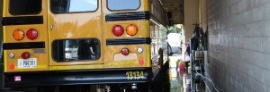 School-Bus-(Back)